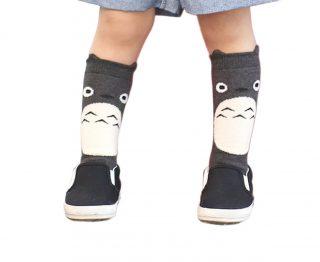 il-mio-vicino-totoro-calzini